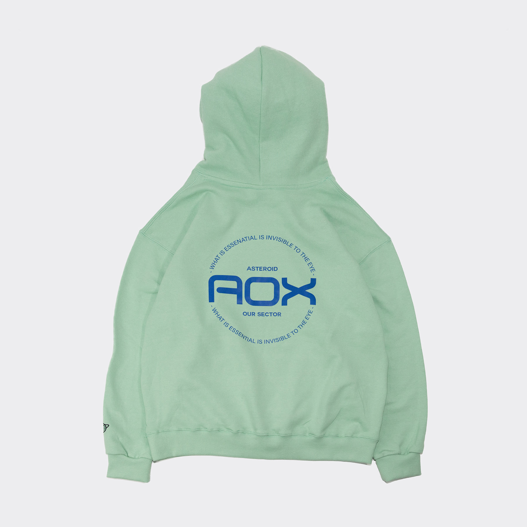 Joy Stick Hoodie(Oversize fit) Mint